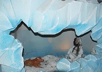 南極物語の画像 p1_2