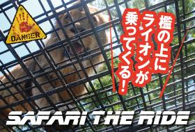 キリンやトラが大接近!檻の上にライオンが乗ってくるかも!?safari the ride-サファリ・ザ・ライド web予約受付中!!