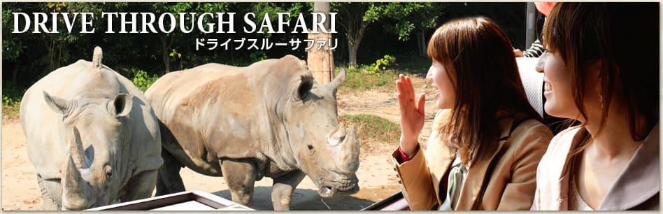 Safari nav 01